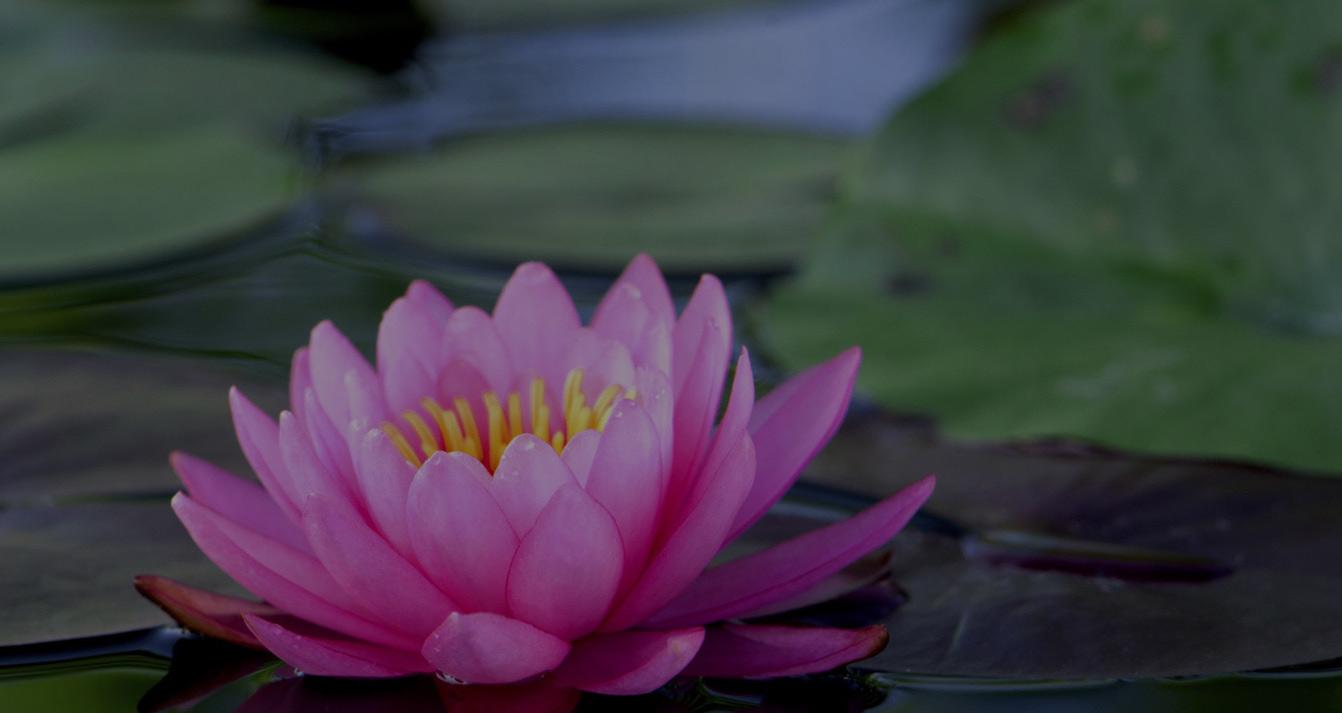 Integrative Healing